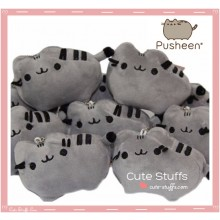 Kawaii Pusheen Plush Charm!