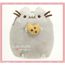 Kawaii Pusheen Plush with Cookie!